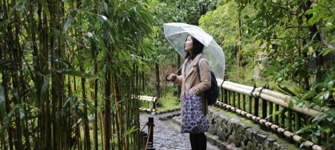 京都をお散歩ご案内例その5*お話が楽しい鈴虫寺へ友達が好きな湯葉料理と抹茶スイーツ堪能