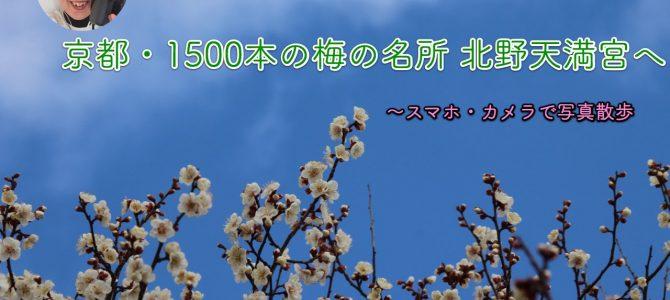 春を撮ろう!京都・1500本の梅の名所 北野天満宮へ*スマホ・カメラで写真散歩